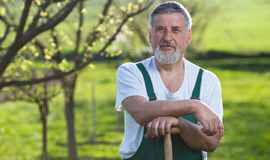 Uomo che fa il giardinaggio nel suo giardino fotografia stock libera da diritti