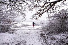 Uomo che fa un'escursione in montagne accanto al prato coperto di neve e di ghiaccio fotografia stock libera da diritti