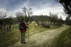 Uomo che fa un'escursione in primavera Fotografia Stock Libera da Diritti