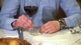 Uomo che giudica un bicchiere di vino disponibile archivi video