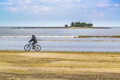 Uomo che guida un Bicylce alla spiaggia Fotografia Stock
