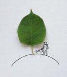 Uomo che innaffia un albero Fotografie Stock Libere da Diritti