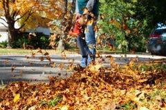 Uomo che lavora con il ventilatore di foglia: le foglie stanno turbinande su e giù un giorno soleggiato Fotografia Stock