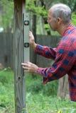 Uomo che livella alberino Fotografia Stock