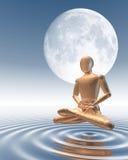 Uomo che medita sotto la luna Fotografie Stock