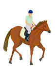Uomo che monta un cavallo Immagini Stock Libere da Diritti