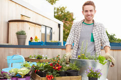 Uomo che pianta contenitore sul giardino del tetto Fotografie Stock
