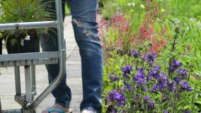 Uomo che sceglie le piante al centro di giardino video d archivio