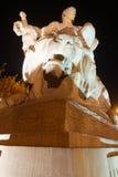 Uomo che sconfigge leone Fotografia Stock Libera da Diritti