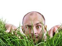 Uomo che scruta attraverso l'erba alta Fotografia Stock Libera da Diritti
