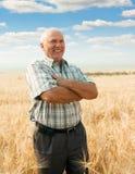 Uomo che si leva in piedi nel campo di frumento fotografie stock libere da diritti