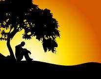 Uomo che si siede nell'ambito del tramonto dell'albero Fotografie Stock Libere da Diritti