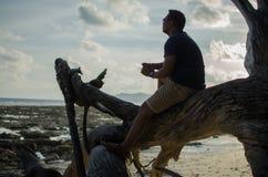Uomo che si siede su un albero caduto o sul legno su una spiaggia Immagini Stock