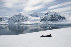 Uomo che si trova sulla neve Fotografie Stock