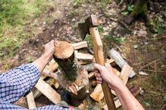 Uomo che taglia legno a pezzi nella foresta Immagini Stock