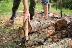 Uomo che taglia legno a pezzi nella foresta Fotografia Stock