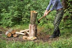 Uomo che taglia legno a pezzi nella foresta Fotografie Stock