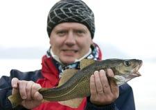 Uomo che tiene i pesci di merluzzo freschi Fotografia Stock Libera da Diritti