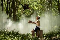 Uomo che trowing gallo da combattimento tailandese per traning Gallo da combattimento di FitnessThai Fotografia Stock