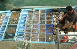 Uomo che vende frutti di mare sulle barche immagini stock