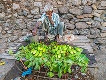 Uomo che vende i cetrioli freschi Fotografie Stock Libere da Diritti