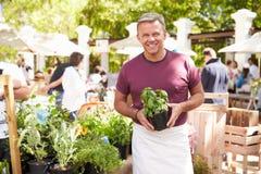 Uomo che vende le erbe e le piante al mercato dell'alimento degli agricoltori Fotografia Stock