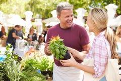 Uomo che vende le erbe e le piante al mercato dell'alimento degli agricoltori Immagine Stock