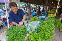 Uomo che vende verdura al mercato dell'agricoltore di mattina Fotografia Stock Libera da Diritti