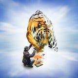 Uomo che vernicia una tigre Immagini Stock