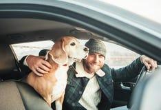 Uomo che viaggia con il suo cane del cane da lepre in auto immagini stock libere da diritti