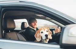 Uomo che viaggia da automatico con il suo cane favorito del cane da lepre dell'animale domestico immagini stock