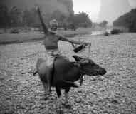Uomo cinese Fotografia Stock Libera da Diritti