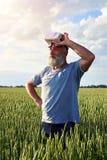 Uomo circondato dal giacimento di grano Immagini Stock Libere da Diritti