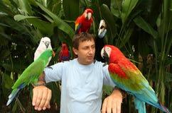 Uomo con i pappagalli Immagine Stock