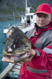 Uomo con i pesci di merluzzo fotografie stock