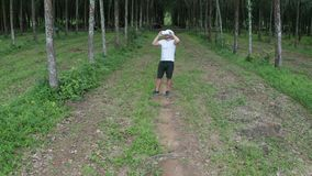 Uomo con i vetri di VR nella foresta video d archivio