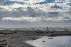 Uomo con il cane su una spiaggia abbandonata fotografia stock libera da diritti