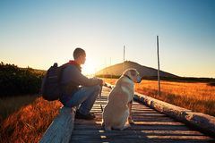 Uomo con il cane sul viaggio nelle montagne Fotografie Stock