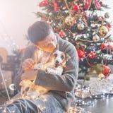 Uomo con il cane vicino all'albero di Natale immagini stock