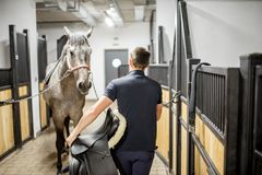 Uomo con il cavallo nella stalla immagine stock libera da diritti