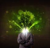 Uomo con il concetto verde della testa dell'albero Fotografia Stock