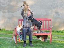Uomo con il gatto ed i cani Fotografia Stock