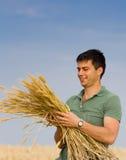 Uomo con il mazzo di grano Immagini Stock Libere da Diritti