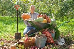 Uomo con il raccolto delle verdure Fotografie Stock
