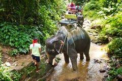 Uomo con il suo elefante sul trekking in Tailandia Fotografie Stock