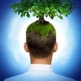 Uomo con l'albero Fotografie Stock Libere da Diritti