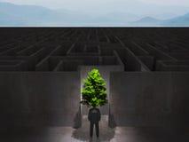 Uomo con l'albero davanti ad un labirinto enorme, concetto di eco Immagine Stock