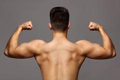 Uomo con l'ente muscolare e forte parte posteriore dell'atleta del culturista con il bicipite ed il tricipite su fondo grigio, sp fotografia stock libera da diritti