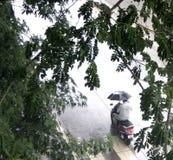 Uomo con l'ombrello in pioggia Fotografia Stock