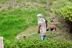Uomo con la falciatrice da giardino Immagini Stock